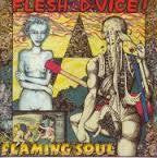FLESH D-VICE-FLAMING SOUL 2CD *NEW*