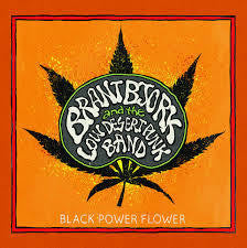 BJORK BRANT-BLACK POWER FLOWER LP *NEW*