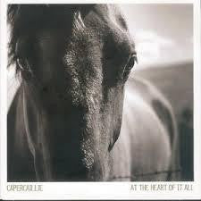 CAPERCILLIE-AT THE HEART OF IT ALL CD *NEW*