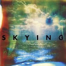 HORRORS THE-SKYING CD *NEW*