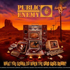 PUBLIC ENEMY-WHAT YOU GONNA DO WHEN THE GRID GOES DOWN? CD *NEW*