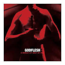 GODFLESH-A WORLD LIT ONLY BY FIRE CD *NEW*
