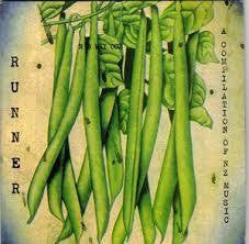 RUNNER A COMPILATION OF NZ MUSIC-VARIOUS ARTISTS CD G
