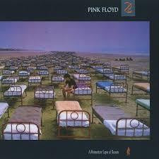 PINK FLOYD-A MOMENTARY LAPSE OF REASON CD VG