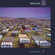 PINK FLOYD-MOMENTARY LAPSE OF REASON LP VG+ COVER VG+