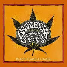 BJORK BRANT-BLACK POWER FLOWER CD *NEW*