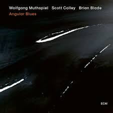 MUTHSPIEL WOLFGANG/ SCOTT COLLEY/ BRIAN BLADE-ANGULAR BLUES CD *NEW*