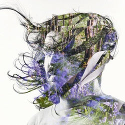 BIBIO-RIBBONS CD *NEW*