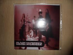 BLACK PANTHERS- HEY HEY 7INCH *NEW*