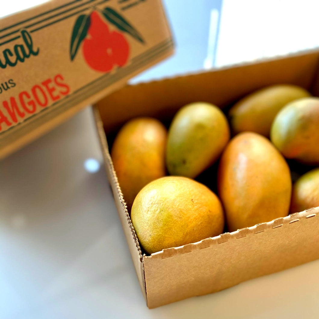 ADD-ON: Tropical Mangoes (1.5kg approx)
