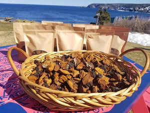 Barking Kettle Chaga chunks (113g)