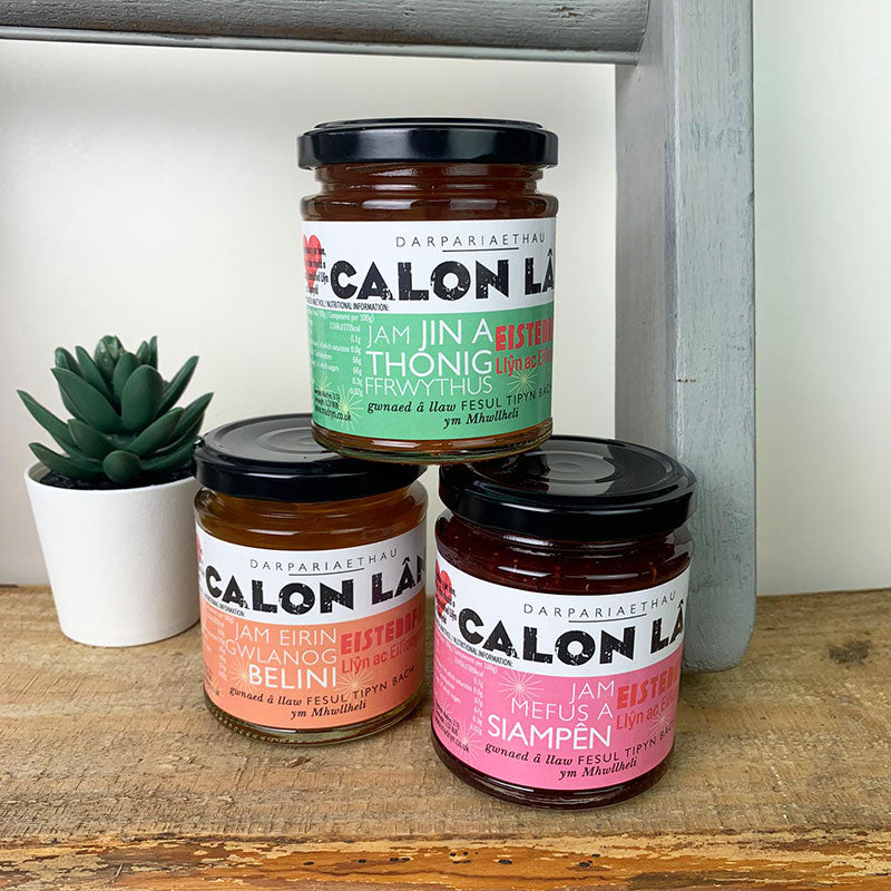 Boozy Welsh jam trio