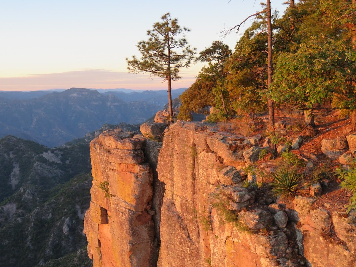copper canyon in mexico-red rocks and trees
