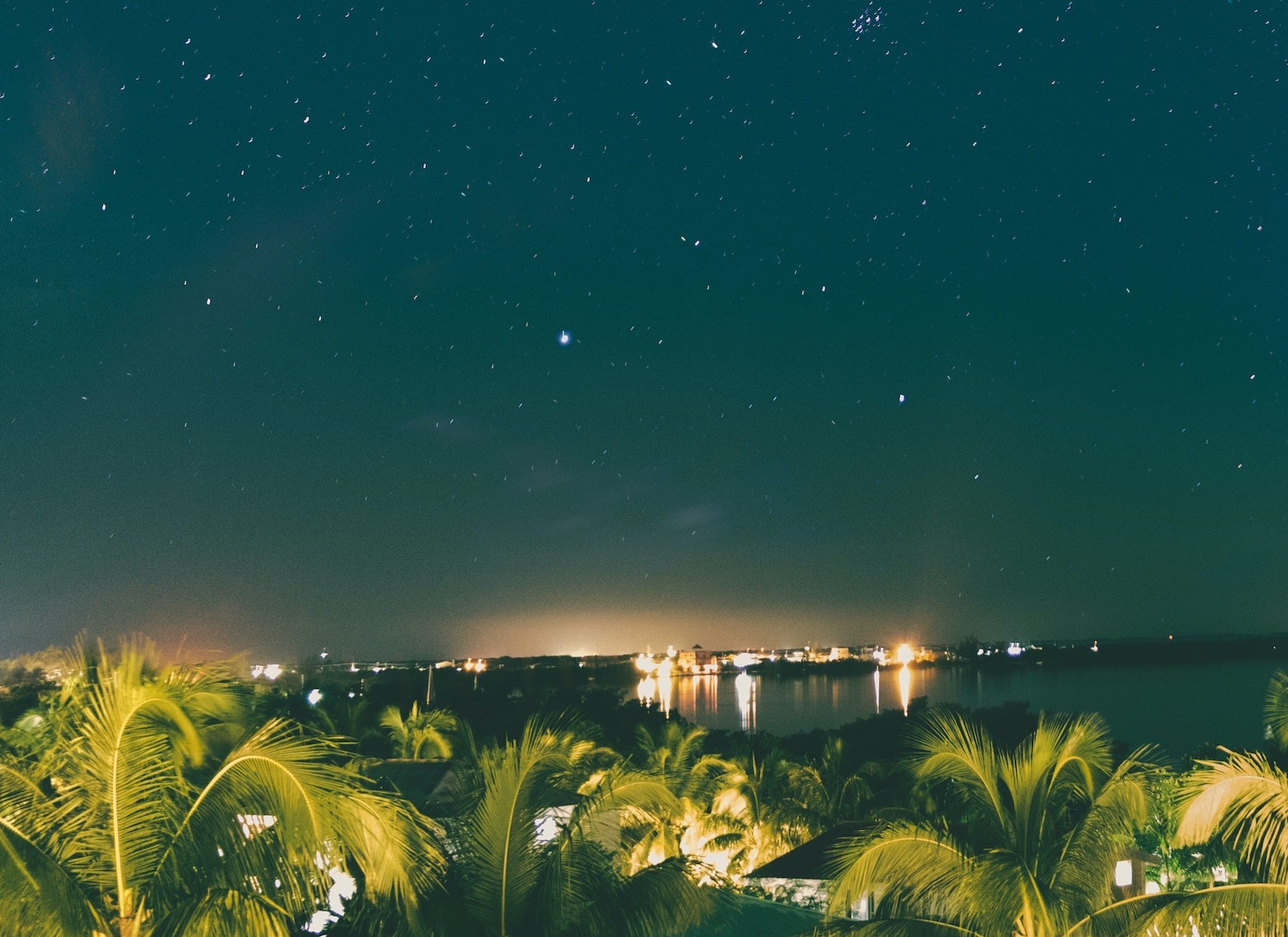 the star night sky in belize with city lights glowing and palm trees swaying
