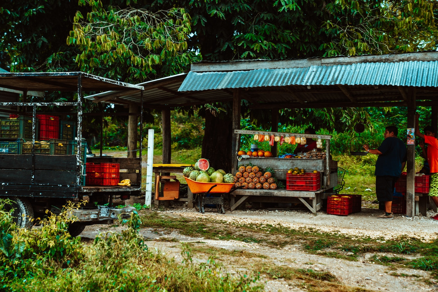 a colourful fruit stand in belize