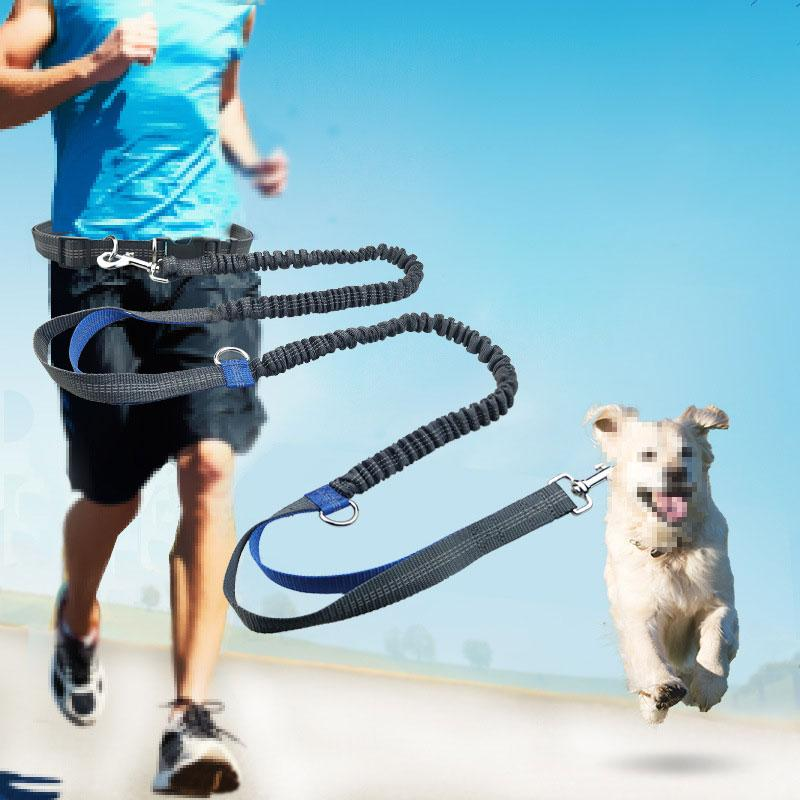 Retractable Hands Free Pet Dog Leash For Running Jogging Walking Dual Handle Bungee Leash Reflective Adjustable Waist Belt - GoJohnny437