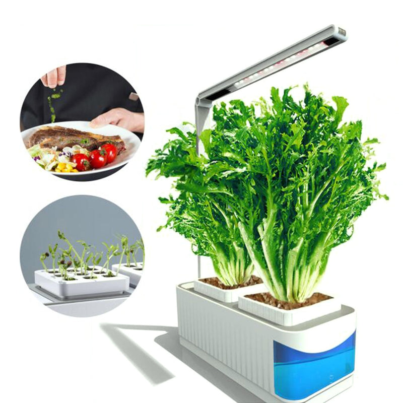 Multifunctional Smart Indoor Herb Gardening Planter Kit Herb Hydroponic Growing System LED AC 100-240V