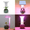 Indoor USB LED Grow Light Timer Full Spectrum Lights For Flowers Cactus IR