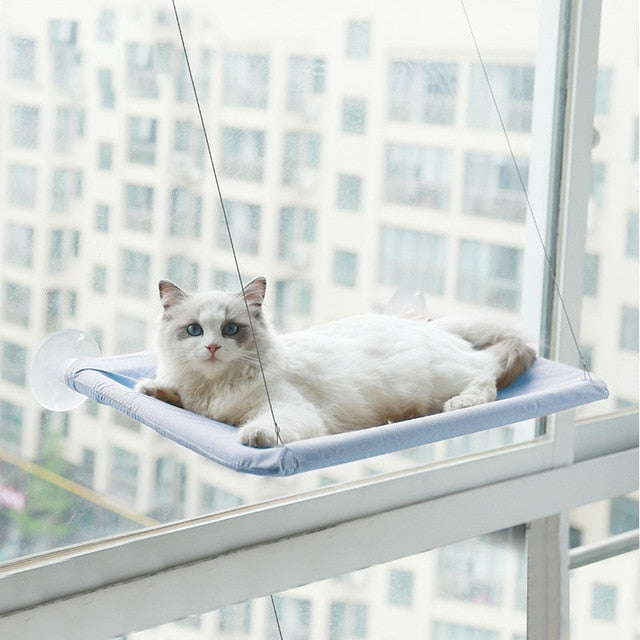 Cute Pet Hanging Beds Bearing 20kg Cat Sunny Window Seat