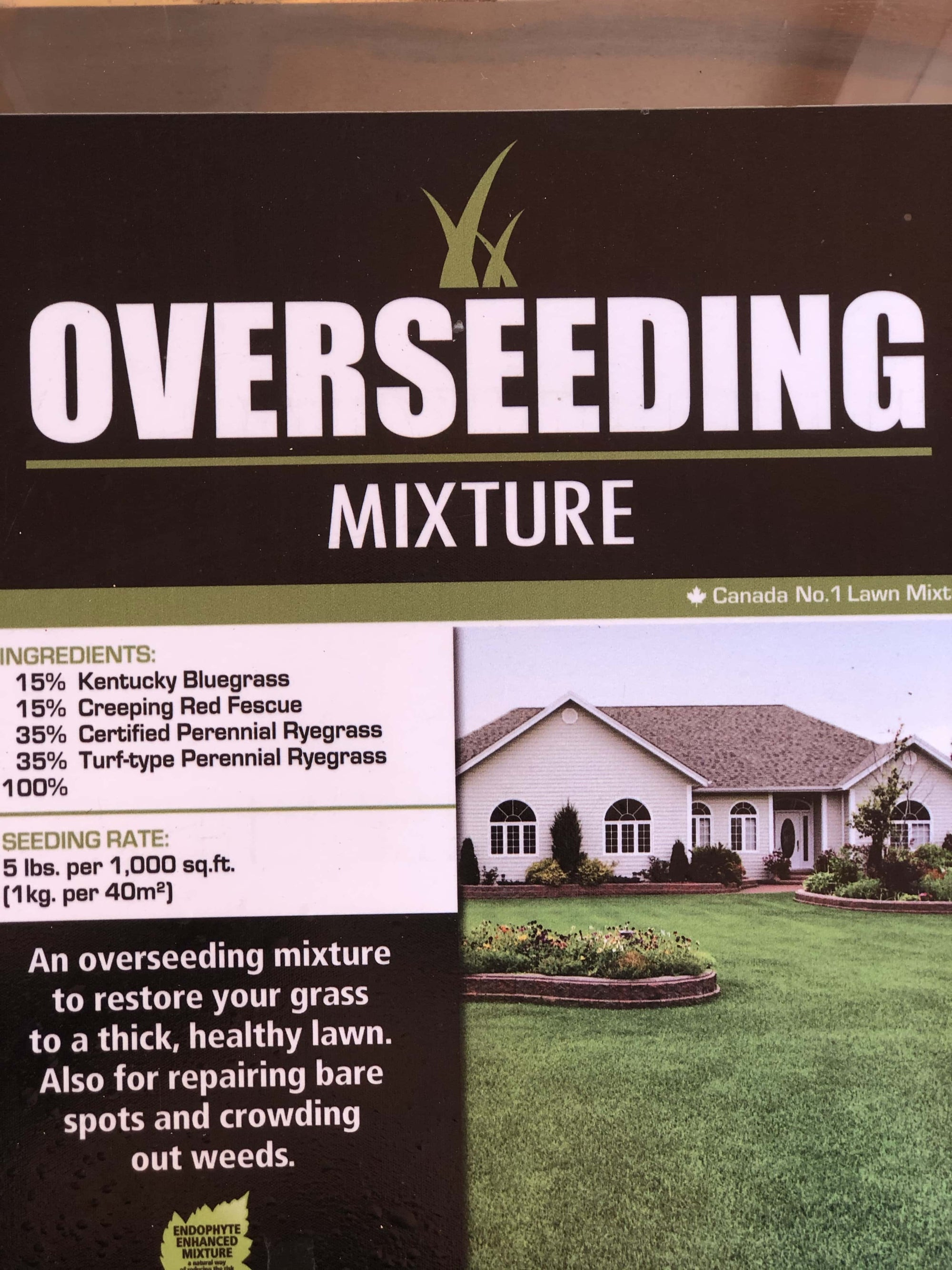 Overseed Grass Seed - Barrie's Garden Centre