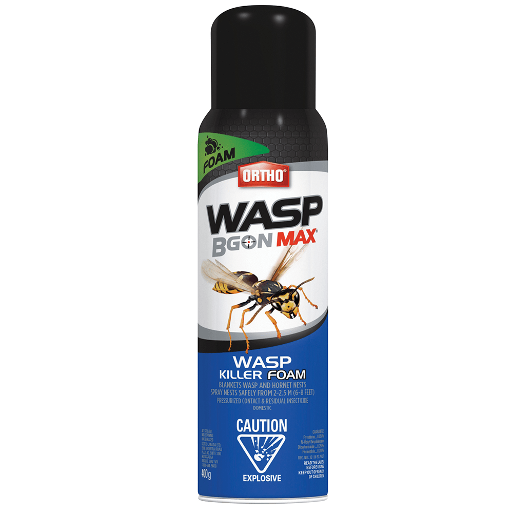 Ortho Hornet and Wasp FoamSpray - Barrie's Garden Centre