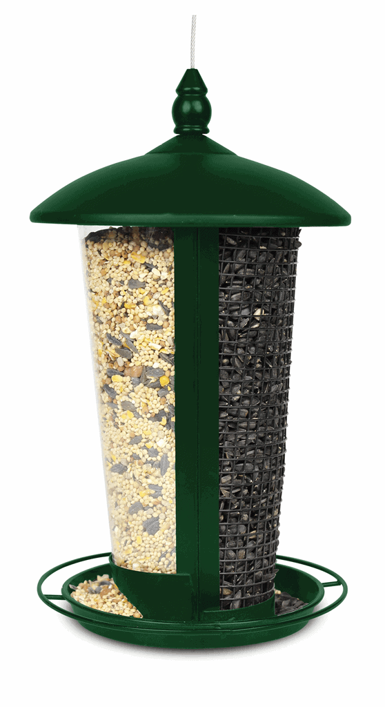 Bird Feeder - Dual Purpose Seed Feeder - Barrie's Garden Centre