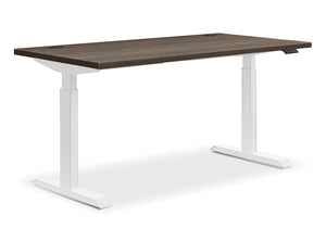 Electric Sit-to-Stand Desk - bluespace interiors