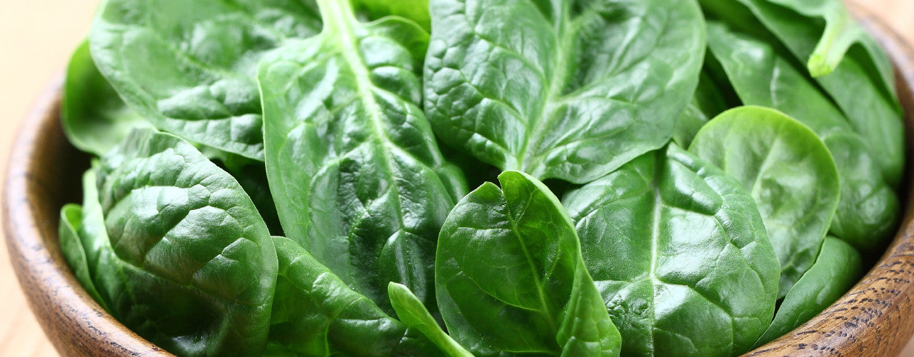 Spinach - the green leafy king