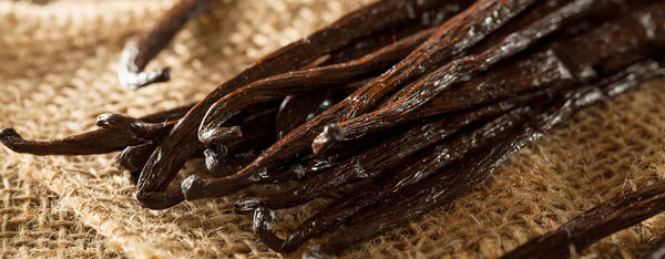 Benefits of Vanilla Bean