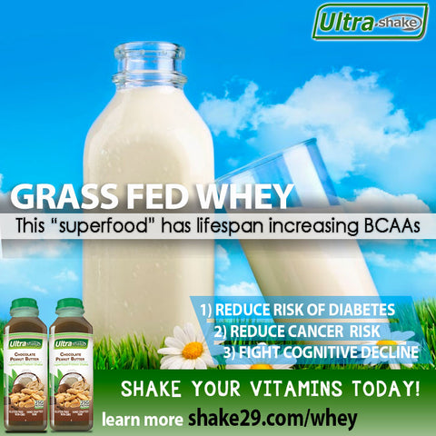 Superfood grass fed whey benefits
