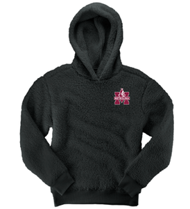 Metrolina Embroidered - SHERPA HOODIE PULLOVER (YOUTH)
