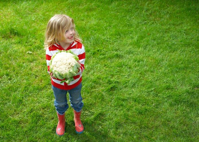 the-benefits-of-eating-vegetables-cauliflower