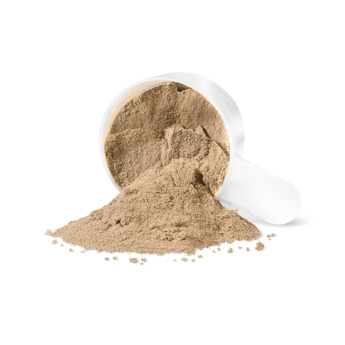 PV3423 Grass Fed Whey Chocolate Powder
