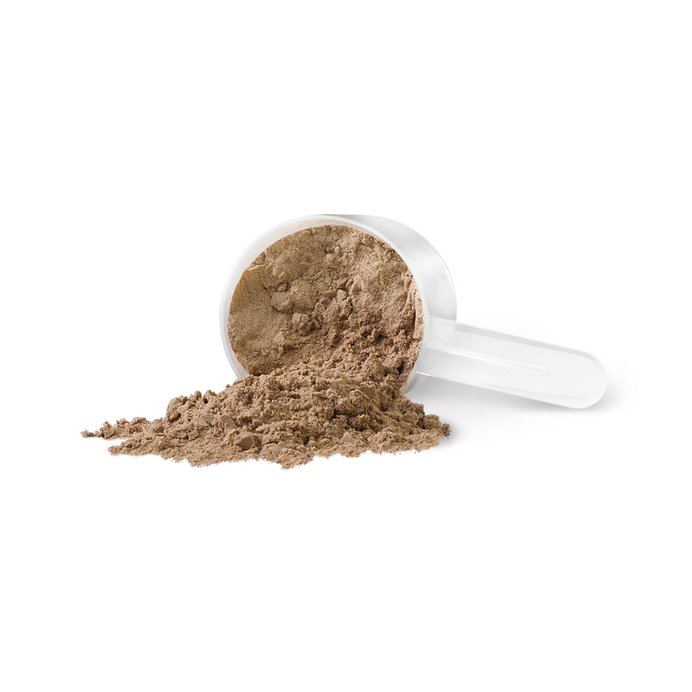 PV3410 Harmonized Fermented Vegan Protein Chocolate Powder