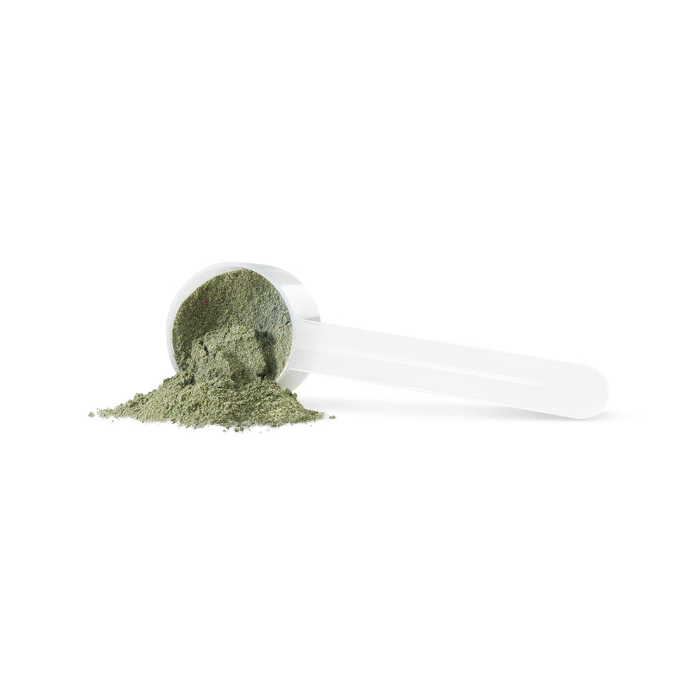 PV3301 VegeGreens Original Powder