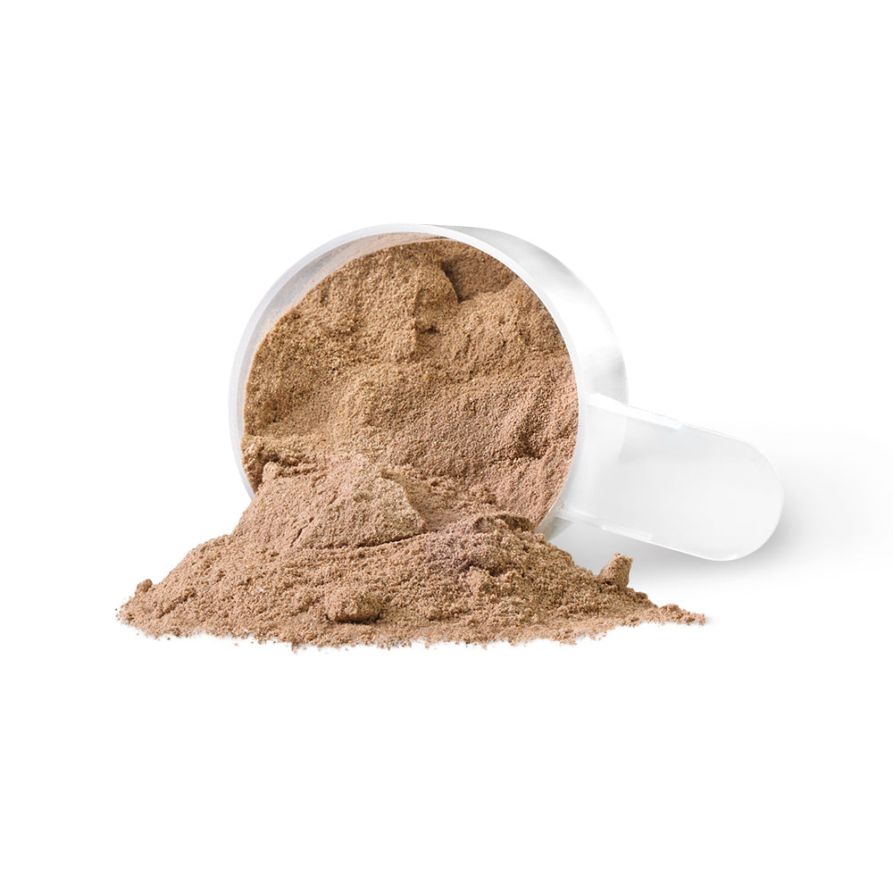 PV3455 WheyEssential Chocolate Powder