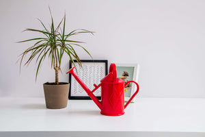 Plastic Heritage Watering Can - Red