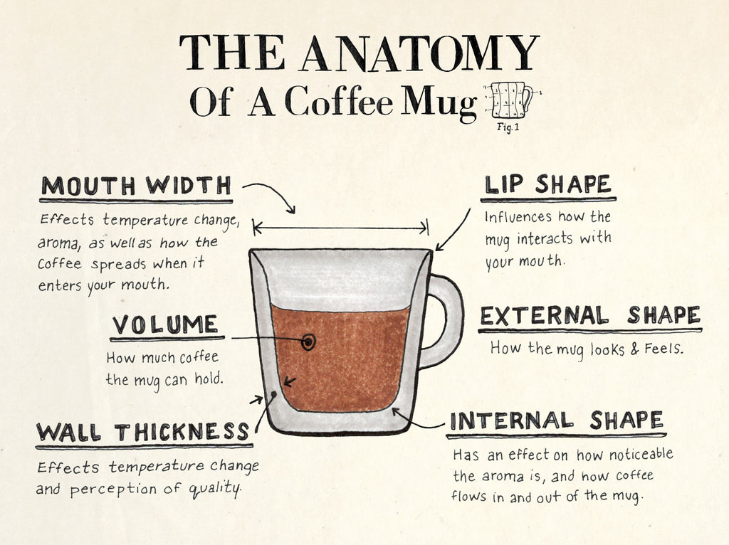 The Anatomy of a Coffee Mug