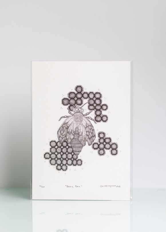 Honey Bee  - Ltd Ed A4 Print