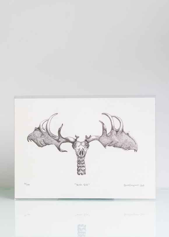 Irish Elk - Ltd Ed A4 Print