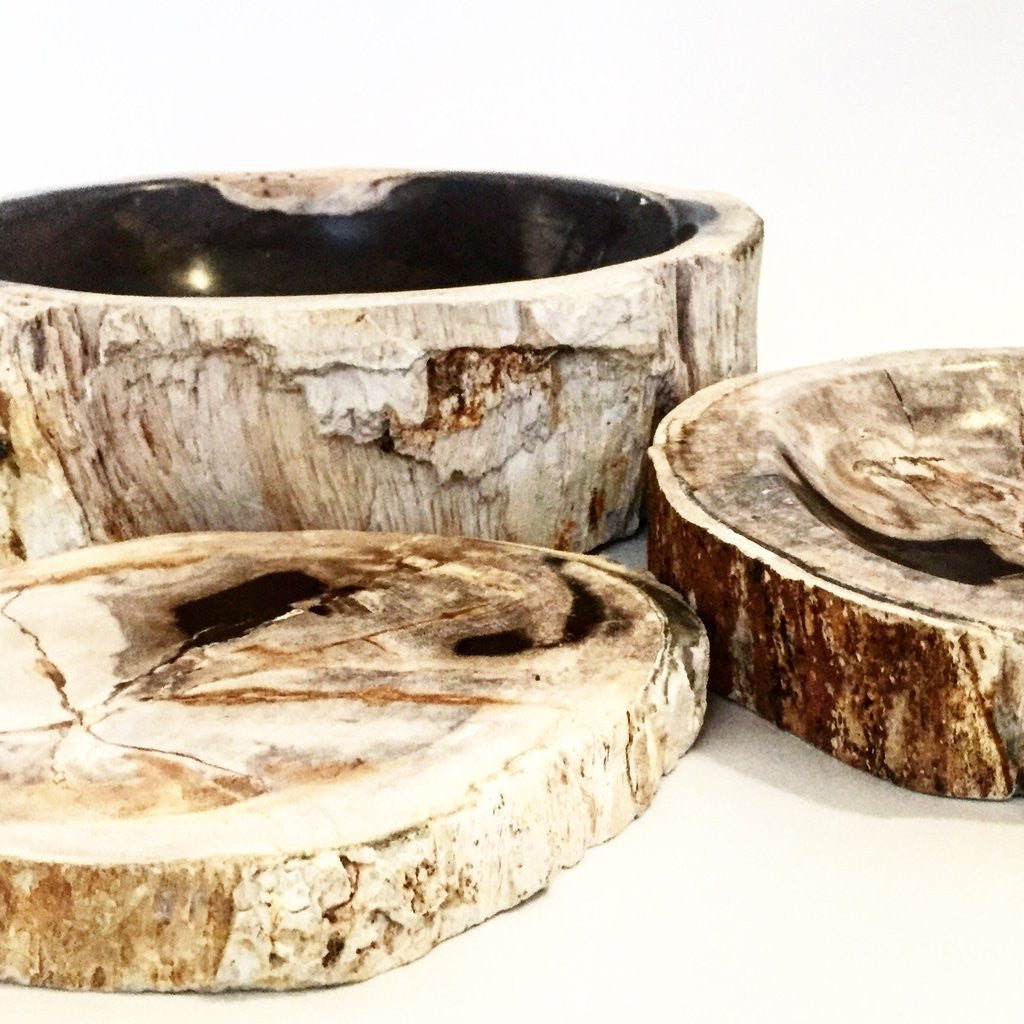 Petrified Wood Bowls and Slabs