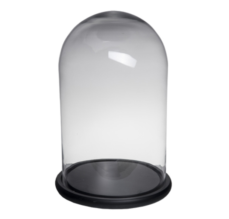 Glass Cloche Dome Terrarium 48 CM