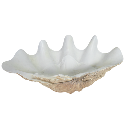 Resin Faux Giant Clamshell Clam 'Light Natural' 52 CM