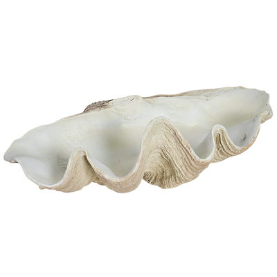 Resin Faux Giant Clamshell Clam 'Light Natural' 70 CM