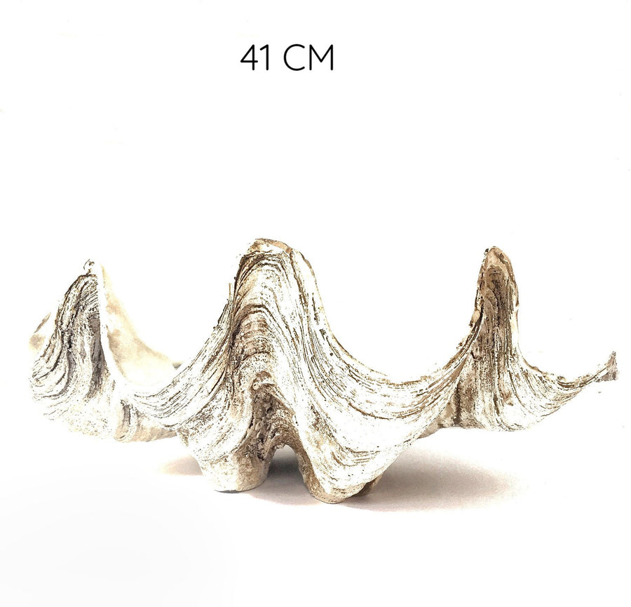 Resin Faux Giant Clamshell Clam - Natural