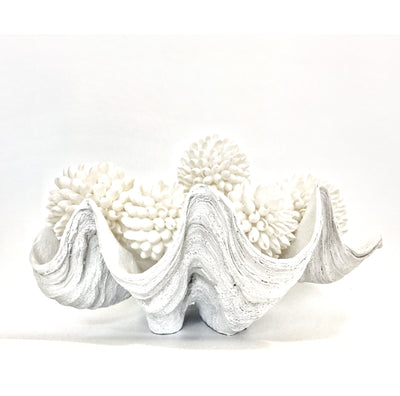 Resin Faux Giant Clamshell Clam - White