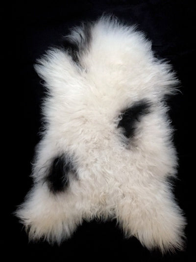 Icelandic Sheepskin - White Spotted - Sourceress The Store - 3