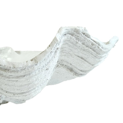 Faux Giant Clamshell - White ***HIRE ONLY***
