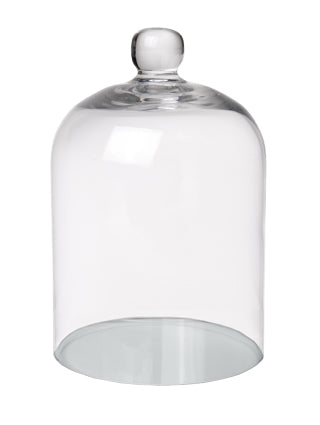 Small Glass Cloche Dome Terrarium