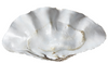 Resin Faux Giant Clamshell Clam EXTRA DEEP